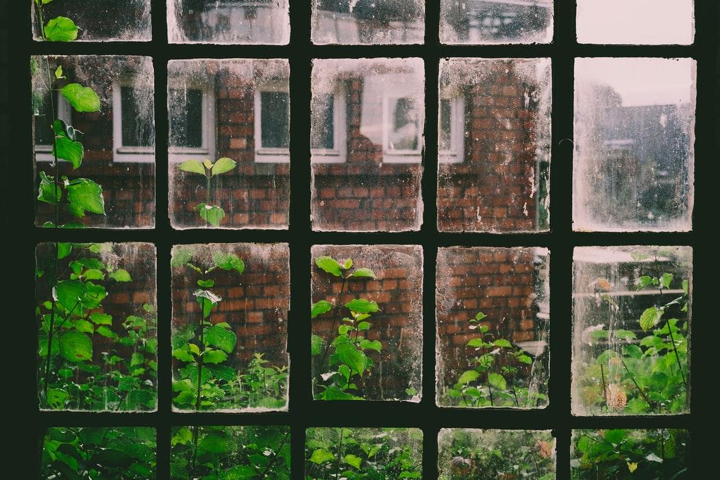 The Window Story